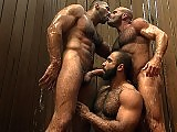 Three muscle bears suck and fuck in the shower