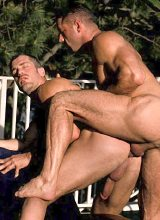 Two mature muscle bears rimming and riding delight