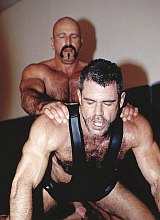 Four mature hairy chested wrestlers screw in a gym
