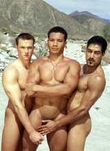 Two latin and one euro muscles poking in the hills