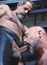 Mature bears in leather sucking and spanking gusto