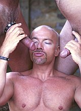 Muscle mature bears sucking and  screwing outdoors